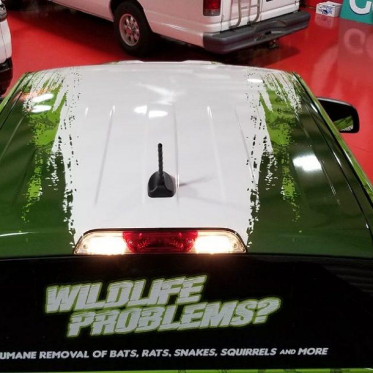 Palmetto Wildlife Extractors Ford Ranger